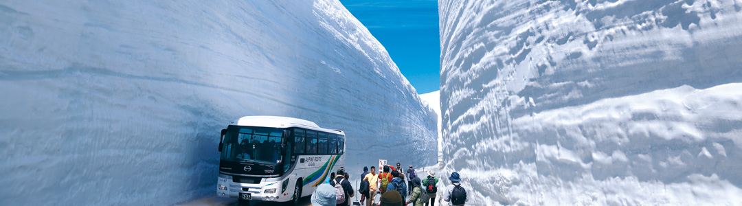 Great Snow Wall